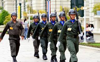 Palace Guards Parade