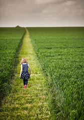 Waylands Smithy Path