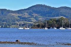 Tranquil Point (bonoab) Tags: seascape boat tasmania lymington huonvalley abelsbay tranquilpoint