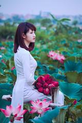 Thiếu nữ áo dài với sen (duyblog.com • nguyenanhduy.com) Tags: lotus sen áodài thiếunữ đầmsen trongdamgidepbangsen