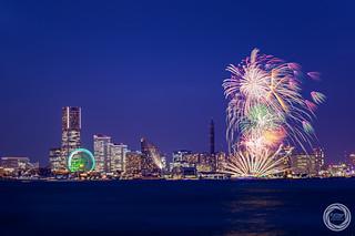 Sparkles in Twilight / Yokohama Port Festival 2015