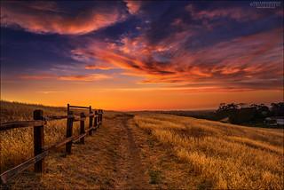 Rancho Sunset