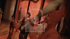 circos en itagui y envigado (coractos) Tags: personajes del circo gran de animales entradas americano ventas mundial madrid si al con mexicano circos en venta maltratados quienes trabajan un df artes circenses origen elefantes el maltrato ver comprar