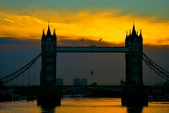 Good Morning Europe!!! (Marie.L.Manzor) Tags: london bridge sunrise sun sky towerbridge bird water thames nikon nikon610 nikkor marielmanzor river clouds cityscape uk england wow