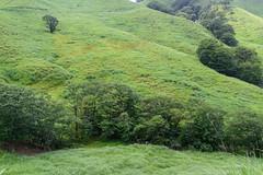 37Tonomine Highland (anglo10) Tags:   japan field