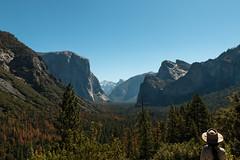 Yosemite Valley (seanxbarber) Tags: yosemitevalley trees nature bluesky outdoors adventure mountains elcapitan halfdome yosemite nationalpark california usa