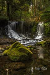Horse Shoe Falls, Mt Field National Park, Tasmania (Simon Pratley) Tags: longexposure nature water forest canon landscape waterfall bush australia lee tasmania horseshoe filters horseshoefalls