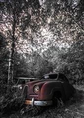 Saab 93 (Mange J) Tags: 1950s 50s 93 bstns europe k5ii magnusjakobsson pentax sigma1020exdc saab sigma1020 sverige sweden vrmland abandoned art auto automobile bil car carcemetery cemetery cool dead forrest hidden moss rust summer transportation tree wood wreck vrmlandsln se