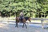 All Photos - 42 of 73 (amandafine) Tags: barncats cats horses horse premiere horsebackriding riding rockcreekpark whoa