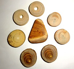 Various wood slices mix. Jewelry supplies, wall art, small wooden discs. Jewelry findings, wooden jewelry parts, jewellery making supply. (john bonham2) Tags: wood slices mix natural wooden parts jewelry supply making findings jewelrysupplies jewelryfindings jewelrycrafts