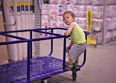 Cart ride toddler (Scott SM) Tags: toddler two year old 25 lowes shopping cart ride climb