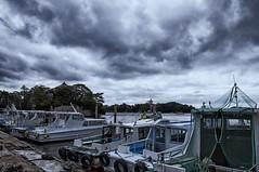 @Matsushima, 松島 (hyas_private) Tags: japan tohoku miyagi matsushima threeviewsofjapan nikon d90 日本 東北 宮城 松島 日本三景