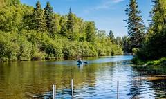 Sur la Rivire-du-Moulin (BLEUnord) Tags: rivire river riviredumoulin chicoutimi saguenay canot canoe parc park parcurbain nature