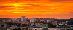 Forest / Anderlecht / Sky (Thierry Hudsyn) Tags: sony a6000 sigma60mm28 brussels bruxelles sunset couchdesoleil cinematic cinematicphotography widescreen train urban urbanlandscape landscape skymeetsland