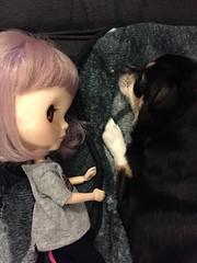 262/366 - Puppy love. 💜