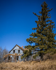 The Blue Tin House (RWTurenne) Tags: abandoned farmhouse