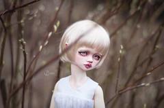Delphine (T e s l a) Tags: dim bellosse