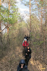35. Nature walk / Прогулка в лес
