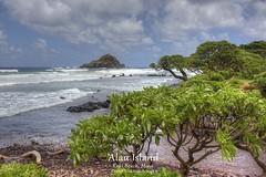 SFO_3279_80_81_82_83.PMTX.Comp2048 (SF_HDV) Tags: beach island hawaii maui kokibeach roadtohana alauisland alau canon5dmarkiii 5dmarkiii 5dm3 5dmark3 canon5dmark3