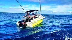 Nick Mags first striped Marlin for 2014. Caught off Bermguai, NSW, Australia. #stormlinegear #marlin #australia #stormline #sportfishing #fishing