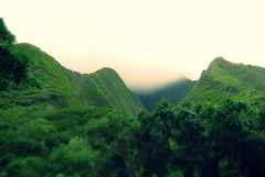 Green on green (TMimages PDX) Tags: usa mountain geotagged photography hawaii rainforest image maui explore photograph tropical lush hillside fineartphotography 2015 flickrexplore iaovalleystatepark explored iphoneography
