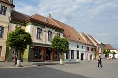 2015_Medgyes_1729 (emzepe) Tags: transylvania transilvania tavasz kirándulás roumanie 2015 erdély május rumänien ardeal siebenbürgen mediasch románia medgyes mediaș medwesch