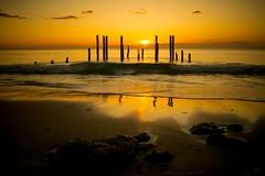 Port Willunga (Throw Back - Just Because) (Sharon Wills) Tags: ocean sunset sea sky seascape beach water night landscape sticks nikon outdoor dusk shore southaustralia waterscape portwillunga d7100 austrralian jettyruins