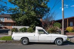 Moonee Ponds (Westographer) Tags: suburbia australia melbourne flats ute parked streetscape mooneeponds westernsuburbs holdenbelmont vehicleconversion