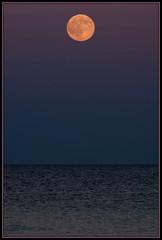 2016-07-19 Moonrise at Beach (208) (Paul-W) Tags: ocean blue sunset sky seagulls water clouds sand surf waves purple wells moonrise ogunquit 2016 northogunquitbeach