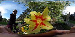 360 flower capture (ThisIsMeInVR.com) Tags: samsung 360 virtual reality ricoh vr oculus spherical 360vr
