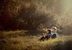 Apples and Sun (Chris Bilodeau Photography) Tags: sun lens nikon with apples 70200 f28 d4