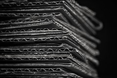 #macro_Monday #card #patterns (vickireynolds2311) Tags: blackandwhite 50mm stripes card zigzag macromonday