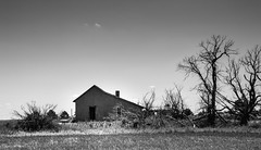 Desolate (unknown quantity) Tags: monochrome sky horizon deadtrees abandonedhouse brush grass openwindows weathered fadedpaint clouds blackandwhite derelict shadows