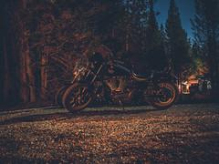 night rider-1 (stoshphoto) Tags: yellowstone montana motorcycle trip travel olympus adventure mountains forest lake stream waterfall