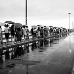 Umbrella lane thumbnail