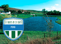 PONDtwittergraphic (IowaNRCS) Tags: laurasg4projects cd8 macintoshhd nrcsia99295tif photocatalog catalog g4 hd lauras macintosh photo projects nrcsia990295tif 295 ponds water iowa