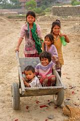 Patan (Bertrand de Camaret) Tags: nepal patan asie asia enfant child children brouette transport bertranddecamaret ngc nationalgeographic vertical jeux