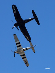 160410_20_LC_TobulQuickSilver (AgentADQ) Tags: jim tobul scott yoak vought f4u4 corsair north american p51d mustang quick silver korean war hero gateway florida air show 2016 lake city fighter plane warbird airplane flying