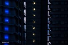 Luminale 2016 (tina djebel) Tags: luminale lights lichter city frankfurt gebude architektur stadt night nights nacht