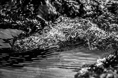 Water (Fred Friggens) Tags: saumane water bubbles black white bw le gardon high shutter speed