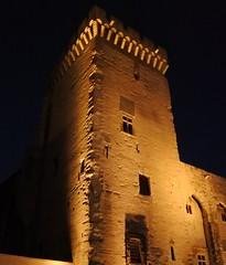 Palais des papes d'Avignon (salva1745) Tags: palais des papes davignon