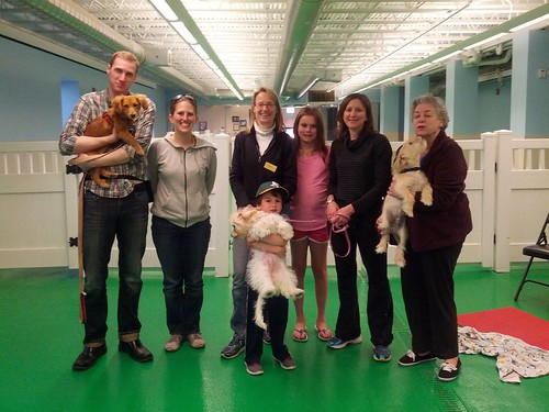 """Puppy Head Start, Session D, Spring 2015-Tues; Class photo-01 • <a style=""""font-size:0.8em;"""" href=""""http://www.flickr.com/photos/65918608@N08/17684683306/"""" target=""""_blank"""">View on Flickr</a>"""