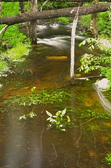 2015_0602The-Flow-Of-Nature0004 (maineman152 (Lou)) Tags: longexposure nature water rain weather june landscape spring stream maine brook flowing naturephotography landscapephotography flowingwater naturephoto longexposurephoto longexposurephotography daysofrain landscapephoto