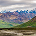 "Exploring the wilderness in Denali National Park and Preserve • <a style=""font-size:0.8em;"" href=""http://www.flickr.com/photos/41711332@N00/27692528993/"" target=""_blank"">View on Flickr</a>"