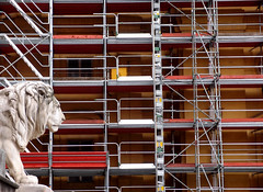 Lion Scaffold (only lines) Tags: scaffold construction lion munich germany