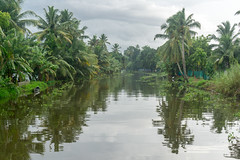 Appelley (Kerala), India (DitchTheMap) Tags: travel blue trees vacation sky india reflection green industry tourism nature water beautiful rural river landscape boat canal fishing asia flickr ship coconut background indian traditional houseboat kerala palm transportation boating tropical backwaters backwater alleppey kumarakom alleppy 2016 alappuzha allepey appelley