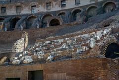 Colosseum senators seats (enurweb) Tags: outdoor architecture senator senators colosseum italy rome ancient politicians amphitheater stonework stones arena