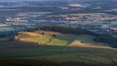 Terre d'Auvergne (Bertrand Thifaine) Tags: d750 auvergne puydedme muratlequaire montagne colline maison prairies troupeau leverdujour
