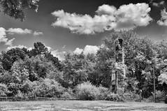 What Remains (F. Neil S.) Tags: chimney remnant vines picketfence housefire farmhouse rural northcarolina piedmont blackwhite blancetnoir mono monochrome fullspectrumconversion hoya r25a filter sony nex6