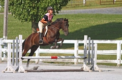 IMG_2435 (SJH Foto) Tags: horse show rider jump action shot girl teen teenager